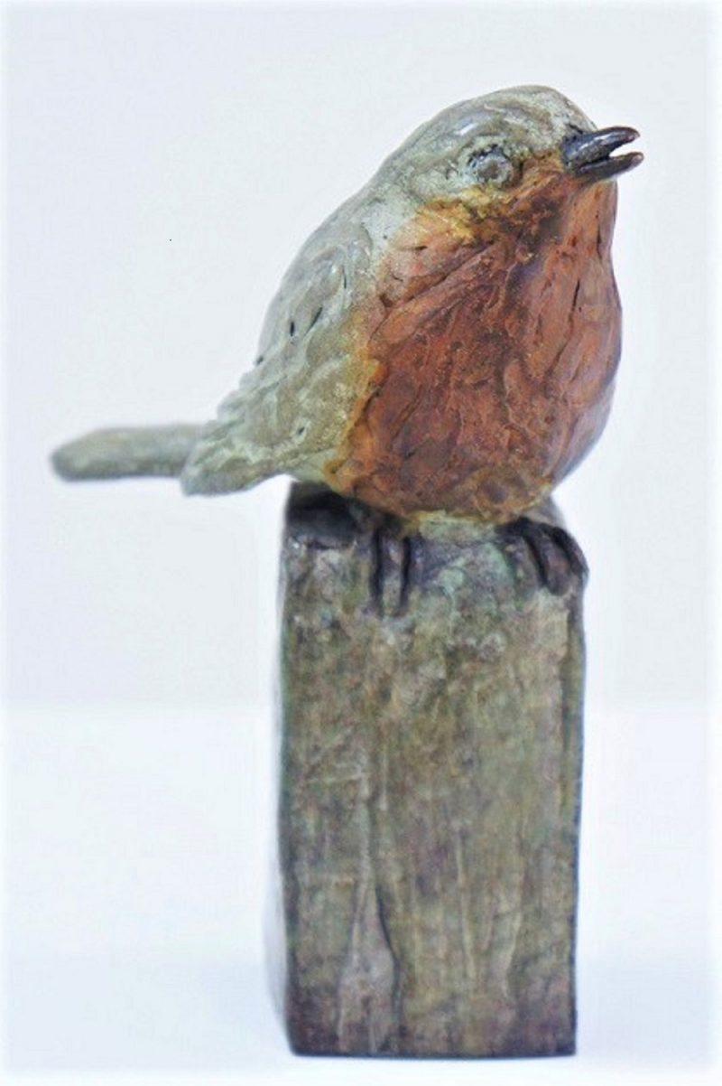 bronzen roodborstje diane timmer